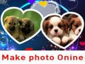Beautiful unique online photo collage 2020, no software required