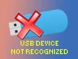 Fix USB Device Not Recognized Code 43 error on the computer