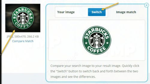 2 search results for the best images 10