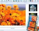 How to download Windows Movie Maker on Windows 10, create videos from photos