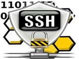 How to connect to SSH server on Windows, macOS and Linux