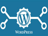 Automatically change the SALT keys in WordPress