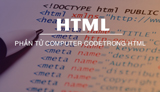 What is the Computer Code element in HTML? How many types?