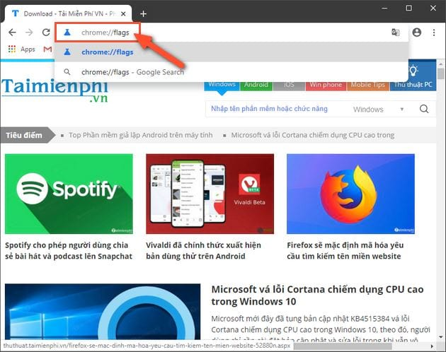 how to cookie on chrome 8