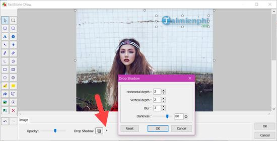 How to insert logo into UK state faststone capture 10