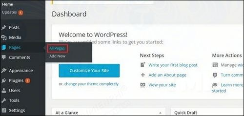 how to edit page correction in wordpress 2