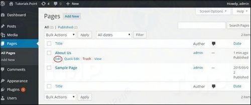 how to edit page correction in wordpress 3