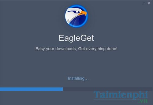 How to use free Eagleget file on your computer 4