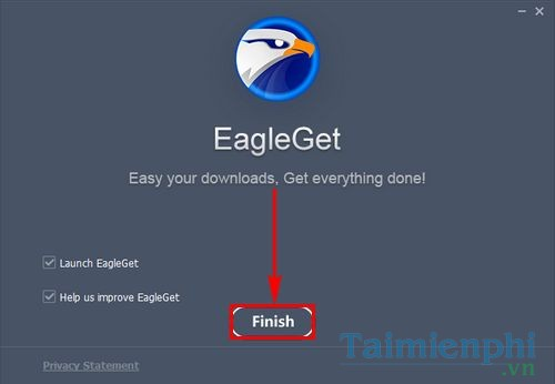 How to use free Eagleget file on your computer 5