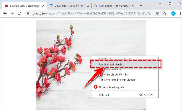 how to use adobestocking 123rf istockphoto flickr mien phi 5