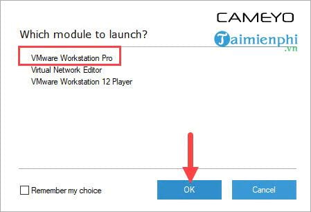 How to create a portable mem cameyo 15