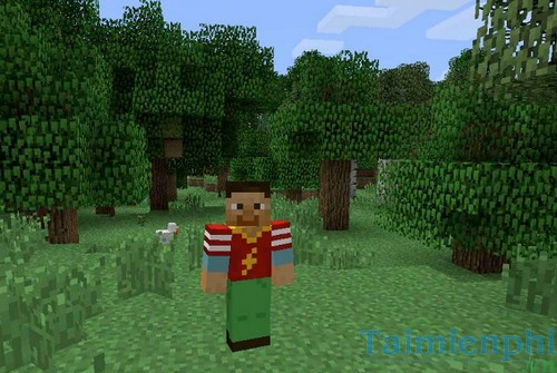 how to change skin for minecraft