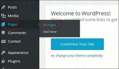 How to delete page delete page in wordpress 2