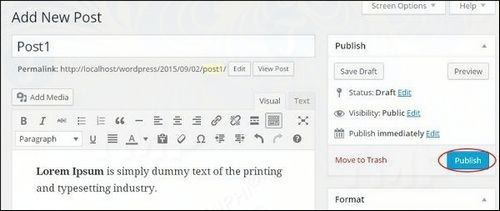 How to publish wordpress writing 4