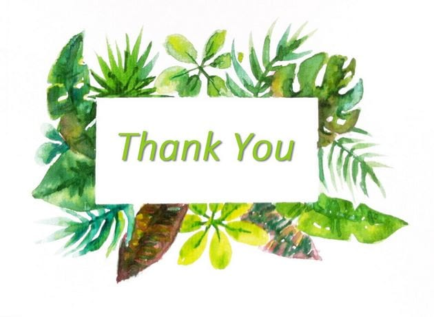 Powerpoint wallpaper thank you thank you on the conclusion slide 9