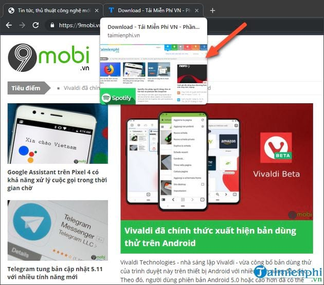 How to activate the preview tab in Google Chrome 8
