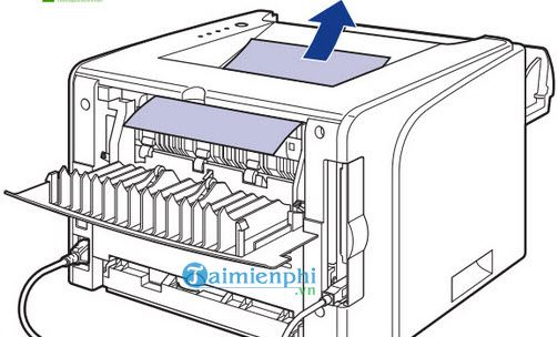 Canon 2900 printer is connected to 7