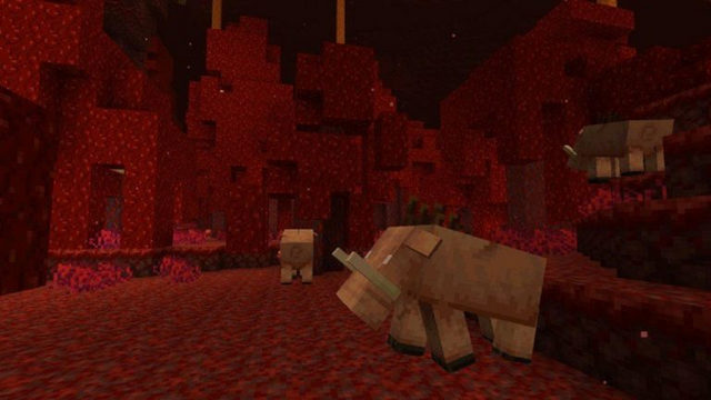 the point of note in the most recent minecraft nether 3 update
