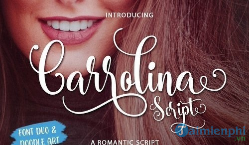 share 108 beautiful typography design fonts 3
