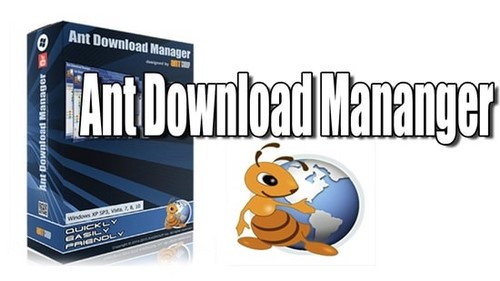 so between ant download manager and idm