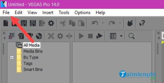 Fix the problem when rendering using Sony Vegas Pro 2