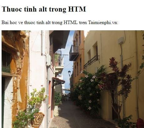 the img in html 3