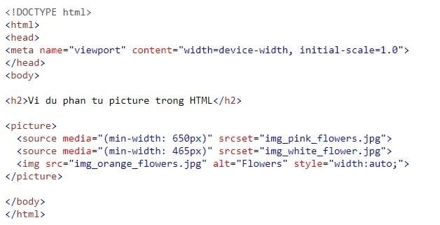 the img in html 28