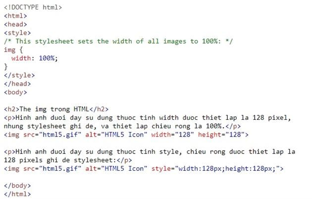 the img in html 10
