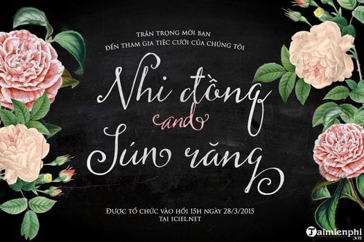 Tong hop font many beautiful Vietnamese 6