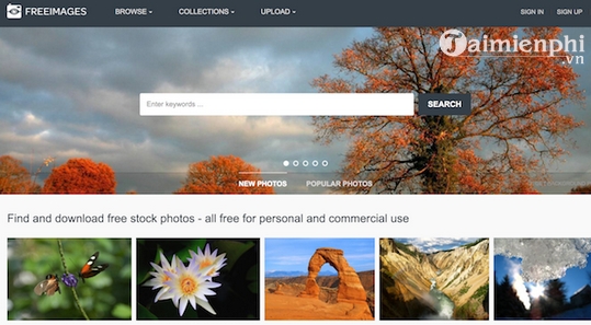 top free website that allows you to download high quality images 5