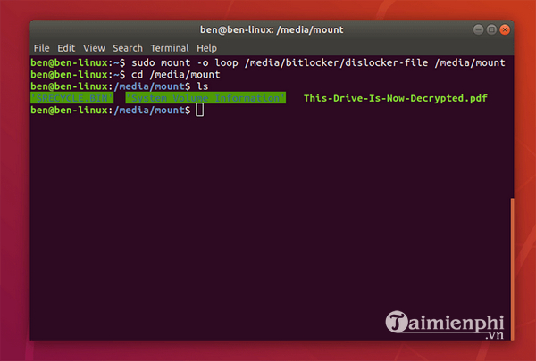 Access partition software with Bitlocker code in linux 5