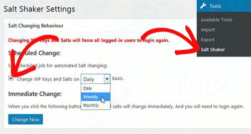 automatic change of salt key in wordpress 3