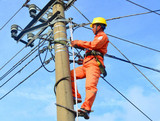 Phone numbers of Hai Phong Electricity, switchboard reporting broken line