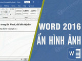 How to hide images in Word files, only display text